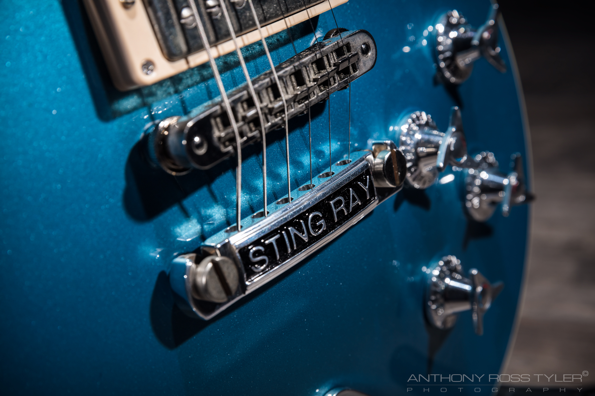 Stingray-LP-BRIDGE